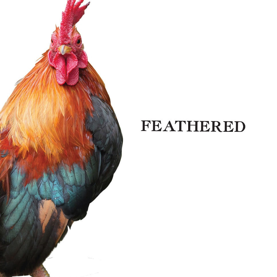 products feathered 50881.1553752254.1280.1280