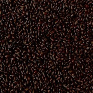 products gra1686 roasted barley joe white maltcraft per kg weyermann briess stout porter 82170.1568947458.1280.1280
