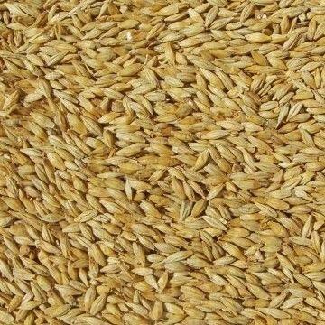 Home Brewing supplies - weyermann carapils