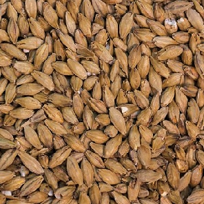 Brewing supplies - ale malt